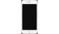 iPhone 6 Plus (A1522/A1524/A1593)